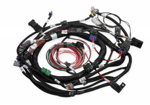 Performance - Ignition & Parts - Holley EFI - Holley EFI Coil On Plug Wire Harness 558-118