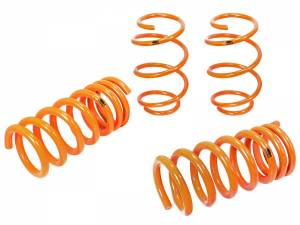 Suspension - Coil Springs & Accessories - aFe Power - aFe Power 410-301002-N