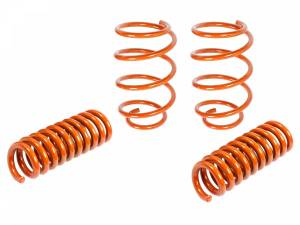 Suspension - Coil Springs & Accessories - aFe Power - aFe Power 410-402002-N
