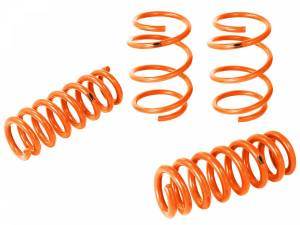 Suspension - Coil Springs & Accessories - aFe Power - aFe Power 410-503002-N