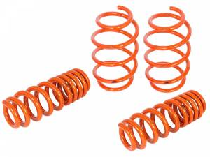 Suspension - Coil Springs & Accessories - aFe Power - aFe Power 410-503006-N